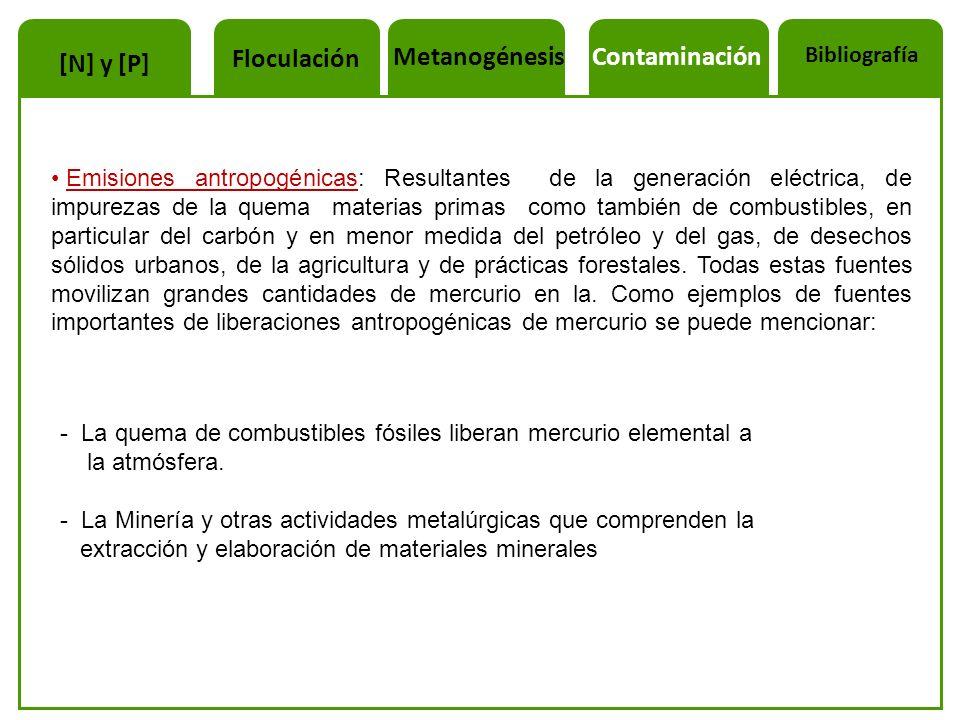 Floculación Metanogénesis Contaminación [N] y [P]